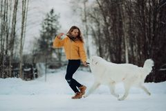 Het meisje onderwijst hoe te om looppas te herstellen een hond in de winterpark Het meisje met Maremma Bos op achtergrond stock afbeelding