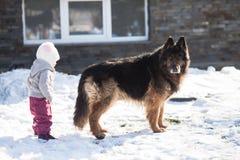 Het meisje ontmoet een hond op de wintergang Stock Afbeeldingen