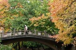 Het meisje op de brug Stock Foto