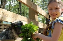 Het meisje op het landbouwbedrijf Stock Afbeelding