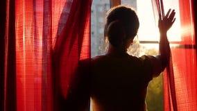 Het meisje opent rode gordijnen en dat met de zon` s stralen speelt Silhouet van een meisje stock video