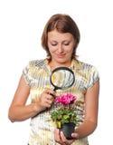 Het meisje overweegt cyclamens door meer magnifier royalty-vrije stock fotografie