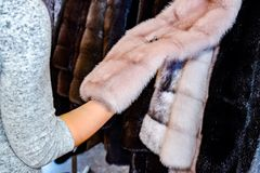 Het meisje raakt het bont op de bontjas Het kiezen van een bontjas in de opslag royalty-vrije stock afbeeldingen