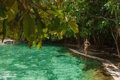 Het meisje rust op het meisje rust Krabi, Thailand Royalty-vrije Stock Afbeelding