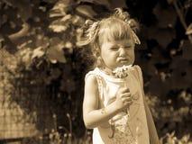 Het meisje snuift bloem, is het Meisje verdraaid, Grappig Gezicht, Onbezorgde kinderjaren stock afbeelding