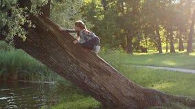 Het meisje speelt in een mooi die de zomerpark, door de zon wordt aangestoken stock footage