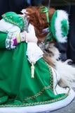 Meisje met hond, Piazza San Marco, Venetië, Italië royalty-vrije stock foto