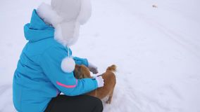 Het meisje streelt hond en puppy in de winter ijzige dag Hondenspel met hun meester op sneeuwweg De winter huisdieren stock footage