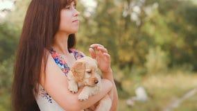 Het meisje strijkt een klein puppy stock videobeelden