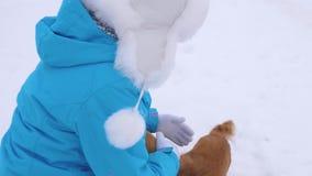 Het meisje tikt honden De maitresse streelt haar honden op straat in de winter lopend op witte sneeuw Liefdemensen aan huisdieren stock videobeelden