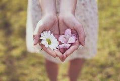 Het meisje toont de bloei in haar hand royalty-vrije stock afbeelding