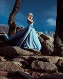 Het meisje in transparante kleding Royalty-vrije Stock Foto