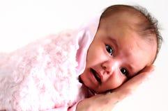 Het meisje van de baby dat in roze deken wordt verpakt die door vader wordt gehouden Stock Fotografie