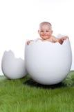 Het meisje van de baby in ei stock afbeeldingen