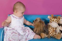 Het meisje van de baby en weinig Yorkshire terriër Royalty-vrije Stock Foto's