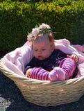 Het meisje van de baby in mand royalty-vrije stock afbeelding