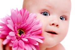 Het meisje van de baby met bloem Royalty-vrije Stock Afbeeldingen