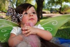 Het Meisje van de baby met Vleugels Stock Foto's
