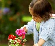 Het meisje van de baby wat betreft bloemen Stock Foto