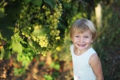 Het meisje van de baby in wijngaard Stock Afbeelding