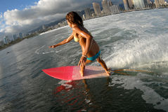Het meisje van de bikini surfer het surfen royalty-vrije stock fotografie
