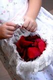 Het meisje van de bloem Royalty-vrije Stock Afbeeldingen