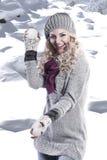 Het meisje van de de manierschoonheid van de winter stock foto's