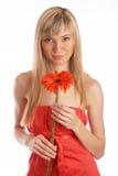 Het meisje van de glamour in een oranje kleding Royalty-vrije Stock Fotografie