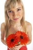 Het meisje van de glamour in een oranje kleding Royalty-vrije Stock Afbeelding