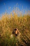 Het meisje van de hippie in het gras. royalty-vrije stock afbeeldingen