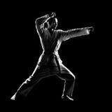 Het meisje van de karate stock afbeelding