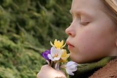 Het meisje van de lente Royalty-vrije Stock Afbeeldingen
