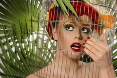 Het meisje van de papegaai Royalty-vrije Stock Foto