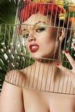 Het meisje van de papegaai Royalty-vrije Stock Fotografie