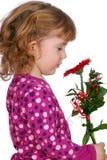 Het meisje van de schoonheid met bloem Royalty-vrije Stock Afbeelding