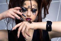 Het meisje van de spin en spinsmithi van Brachypelma Royalty-vrije Stock Foto's