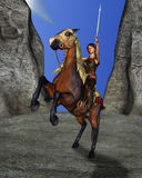 Het meisje van de tiener op haar paard Stock Foto