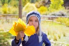 Het meisje van het kind in bos gele de dalingsbladeren van de de herfstpopulier ter beschikking Stock Afbeeldingen