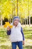 Het meisje van het kind in bos gele de dalingsbladeren van de de herfstpopulier ter beschikking Stock Fotografie