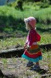 Het meisje van het land Stock Fotografie