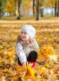 Het meisje verzamelt bladeren. Stock Afbeeldingen