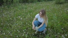 Het meisje verzamelt bloemenpaardebloemen in een weide stock video