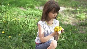 Het meisje verzamelt een boeket van paardebloemen in een weide kind ruikend boeket van paardebloemen stock video