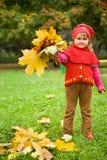 Het meisje verzamelt esdoorn doorbladert in park in de herfst royalty-vrije stock afbeelding
