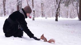 Het meisje voedt de eekhoornnoten in het park stock footage