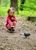 Het meisje voedt stedelijke duivenduiven in het park Stock Foto's