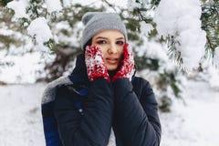 Het meisje warmes haar wangen in handschoenen bij de koude winter in p stock fotografie