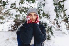 Het meisje warmes haar wangen in handschoenen bij de koude winter in p royalty-vrije stock afbeelding