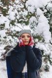 Het meisje warmes haar wangen in handschoenen bij de koude winter in p stock foto