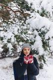 Het meisje warmes haar wangen in handschoenen bij de koude winter in p royalty-vrije stock afbeeldingen